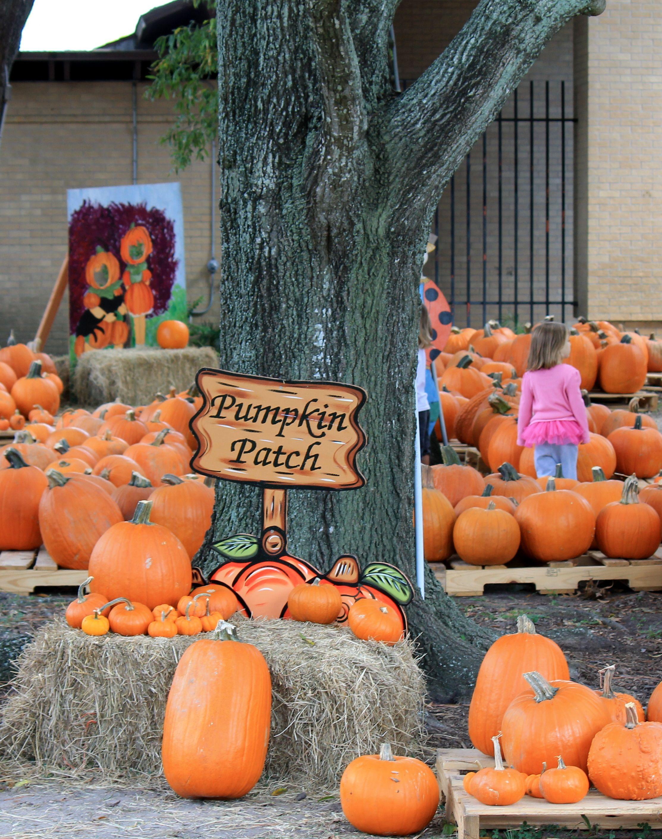 Pumpkin Patch United Methodist Church (Clear Lake City