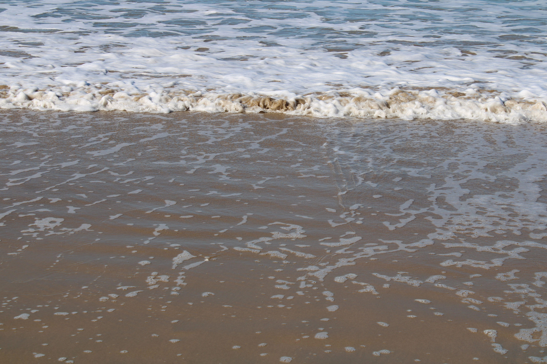 orilla de en la playa de santa catalina, en El Puerto de Santa María