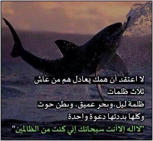 يارب ارحمنا برحمتك Poster Movie Posters Image