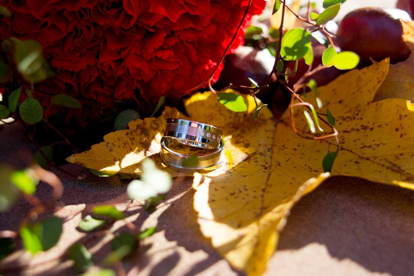 Hochzeitsfotograf 1.0 ‹ Kallidat – Quality Photography