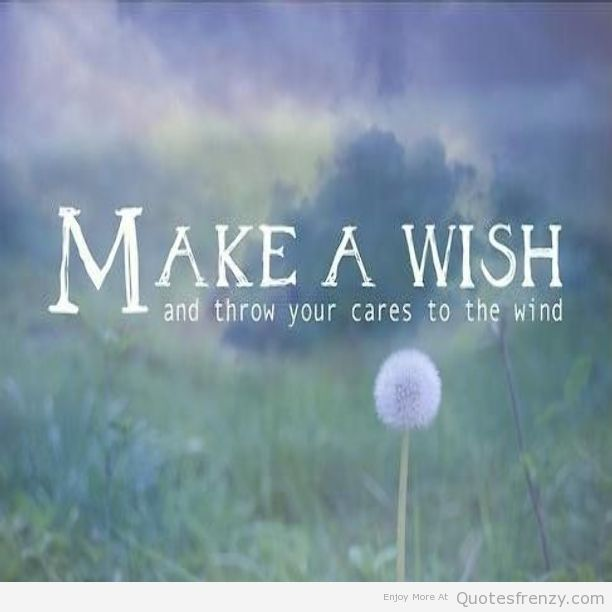 Wish Quotes Dandelion Quotes  Google Search  Frases  Pinterest  Dandelion
