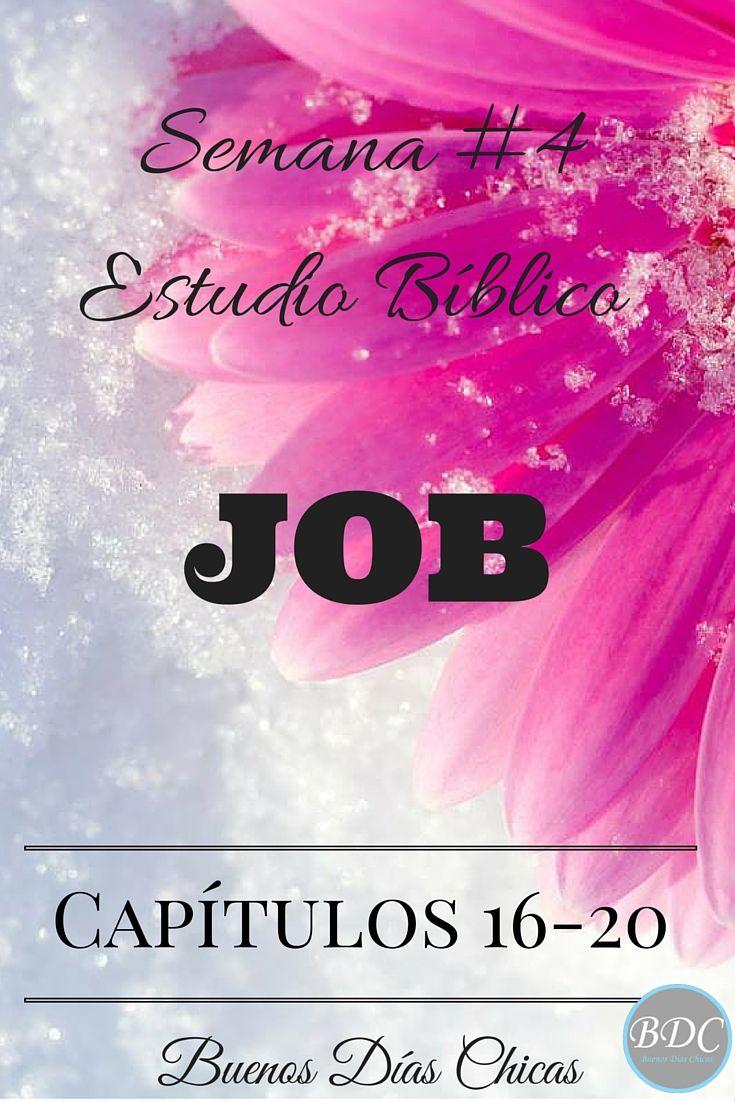 Semana 4 de estudio bíblico del libro de Job. Capítulos 16 ...