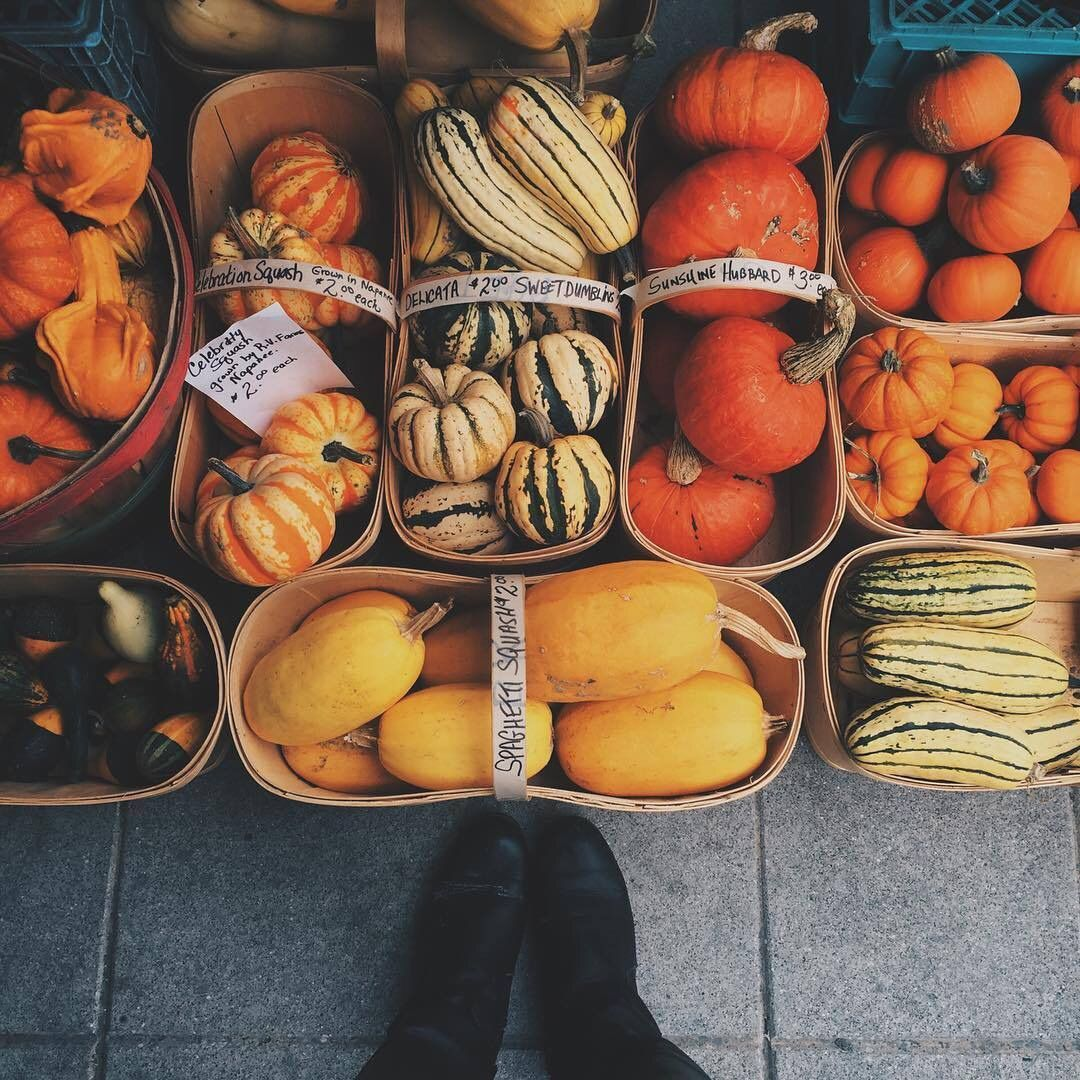 //shine bright 《pinterest adriannahopexo Autumn