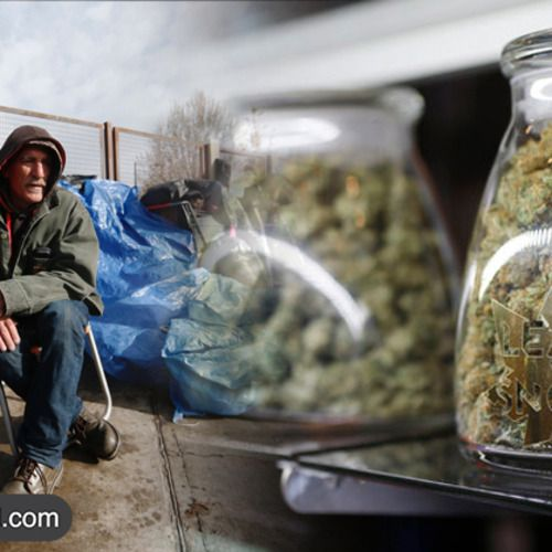 Colorado is using $3 million from marijuana tax to... - ***DTL*** Deprogramming The Lattice