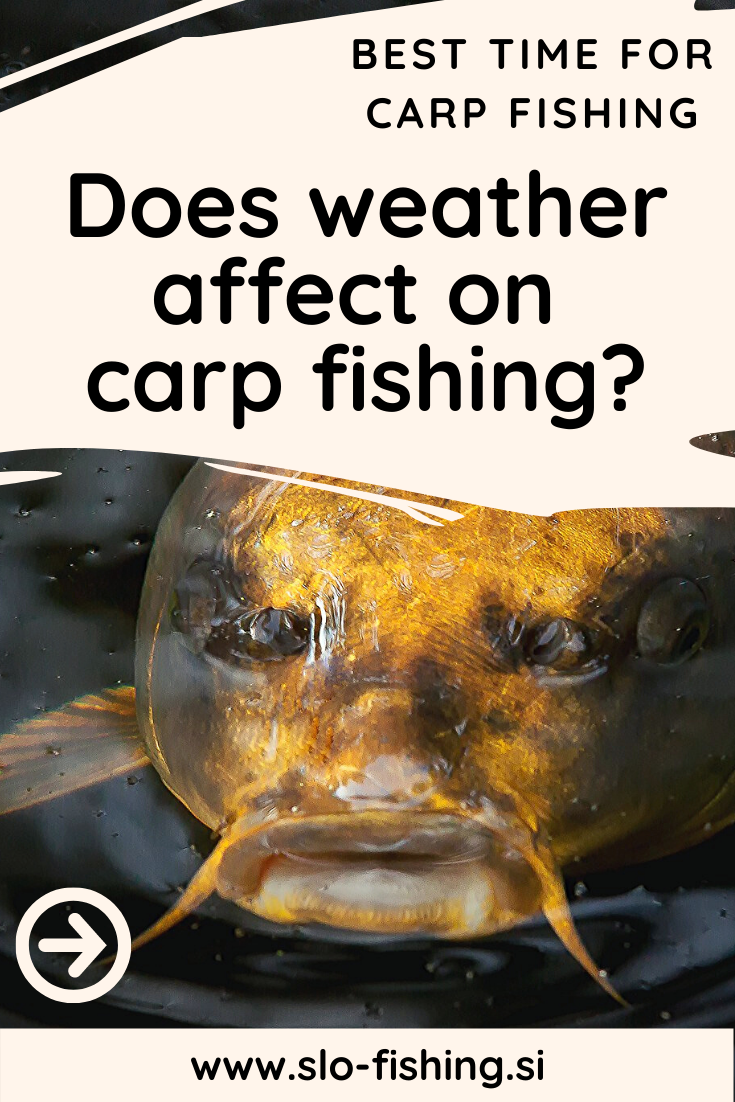 Does rain, wind and air pressure affect on carp fishing? Many factors are important for a successful fishing (carp, fly, bass & pike). All the tips, tricks, hacks & ideas about best time for fishing read on our site! Click, click, click on picture and read all article or repin it! #fishing #carpfishing #tips #carp #fishingbasics
