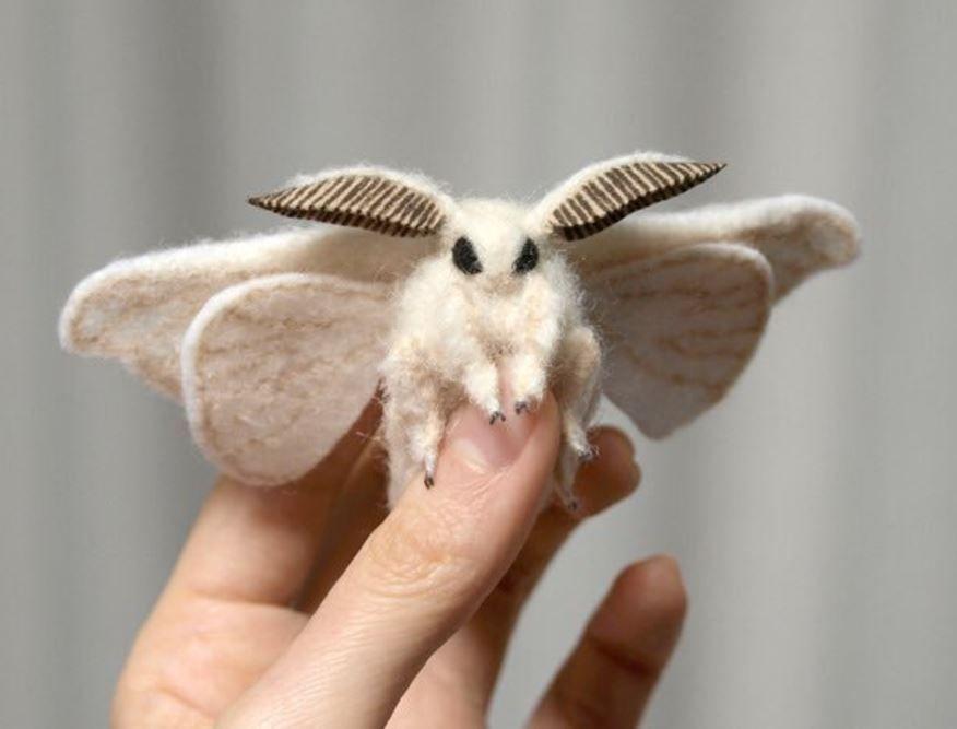 撮05 動物 おしゃれまとめの人気アイデア Pinterest つぐり 蛾 かわいい 蚕 かわいい ペット