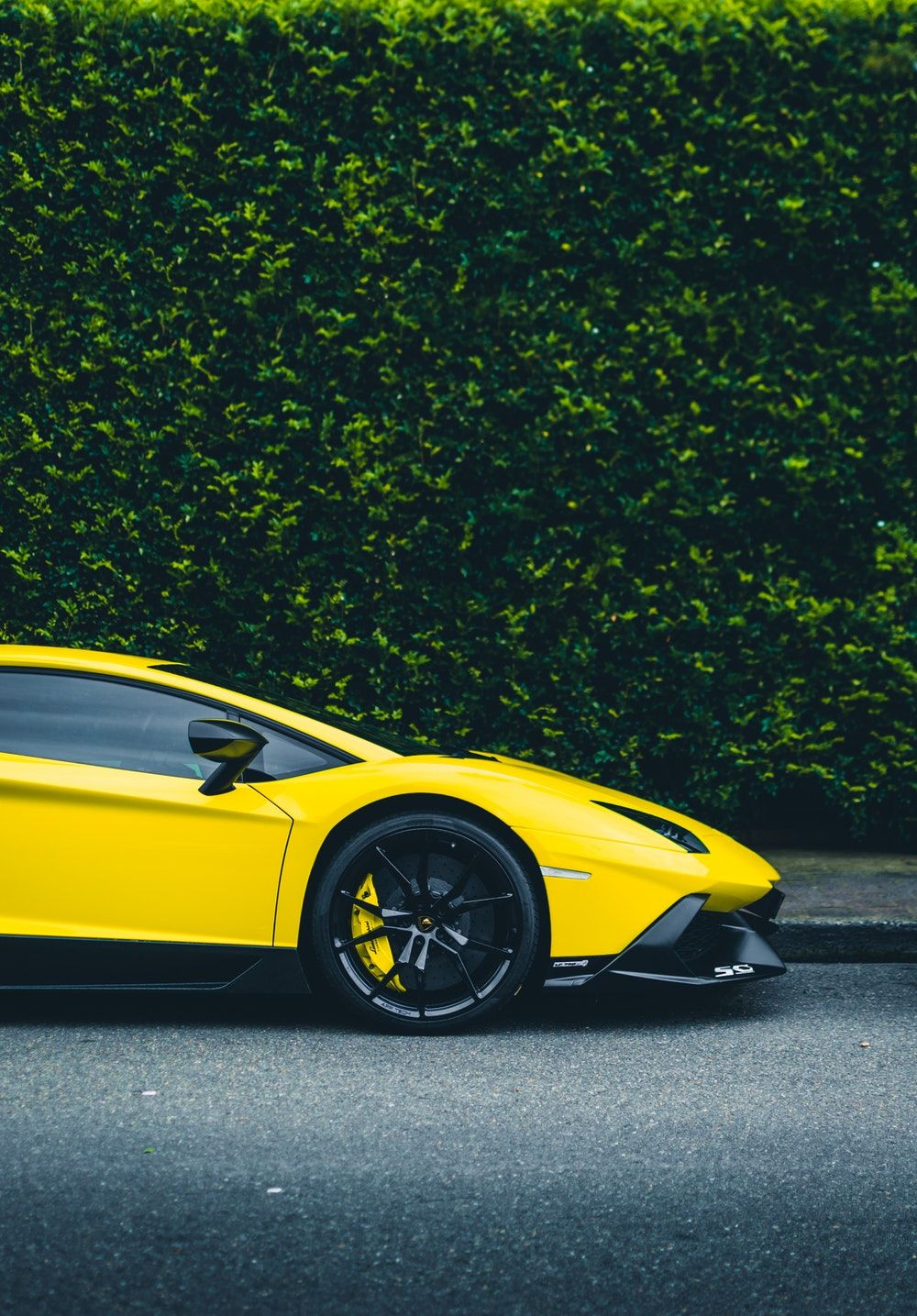 Yellow Lamborghini Coupe Parked Beside Bush Yellow Car Lamborghini Pictures Car