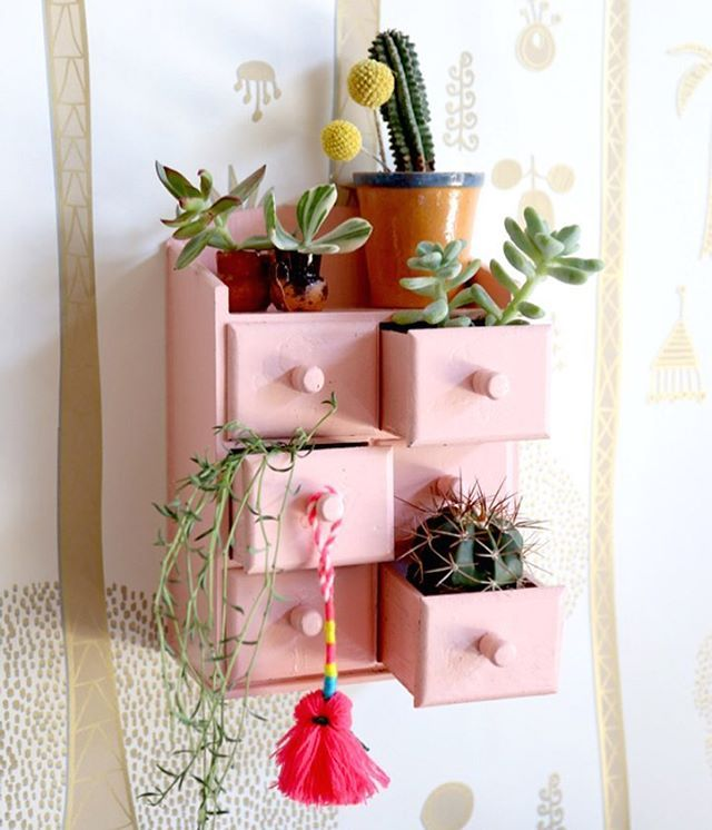 On the blog today, it's a teeny tiny mini cubby garden DIY   and it's SUPER easy #JungalowStyle #thejungalow #Jungalow (photo by @caitlinwatsonboyes )
