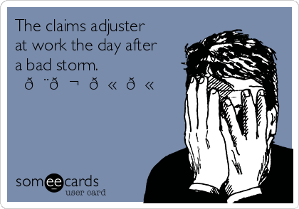 The Claims Adjuster At Work The Day After A Bad Storm Work