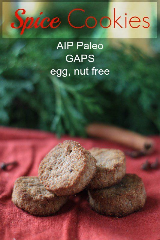 AIP Paleo Spice Cookies at Almost Bananas. Perfect for dunking!