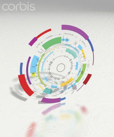 Genome Map  http://media2.corbisimages.com/CorbisImage/hover/23/36/4220/23364220/42-23364220.jpg