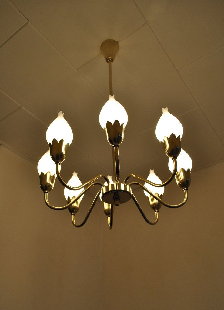 Tulip chandelier by fog mrup pinterest chandeliers tulip chandelier by fog mrup aloadofball Choice Image