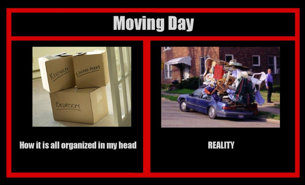 Funny Moving Day Memes For Sanity S Sake With Images Moving