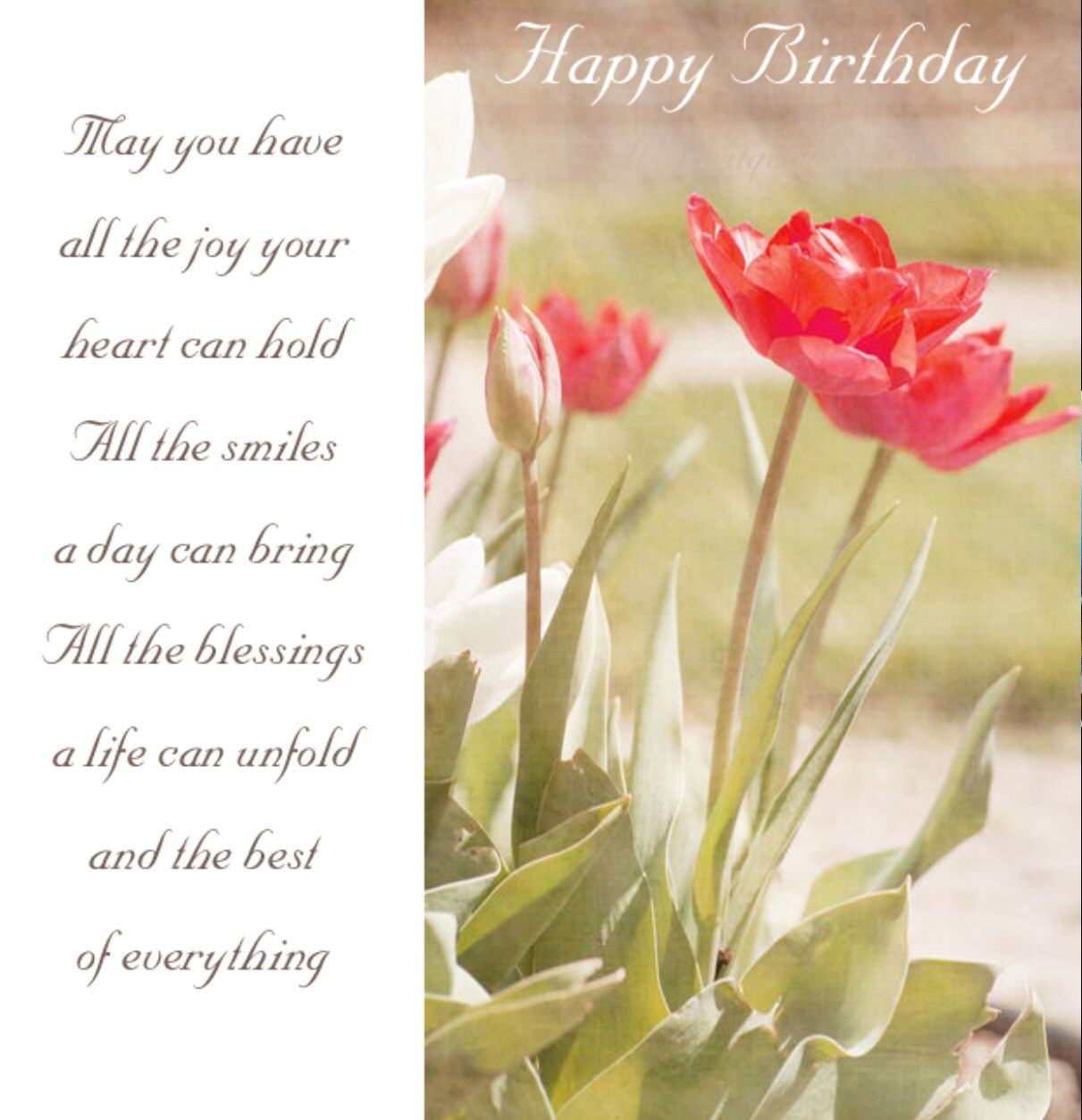 The best happy birthday memes birthdays happy birthday and the best of everything on your birthday kristyandbryce Image collections