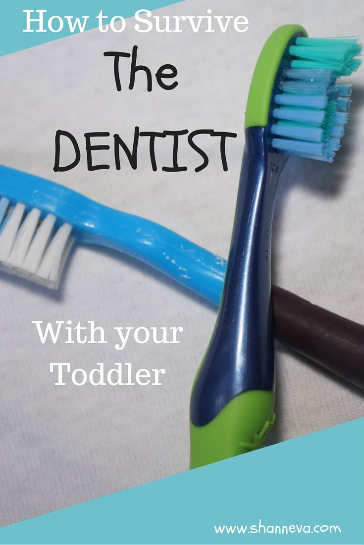 During Dental Health Month, I'm giving you 6 Tips for surviving a trip to the Dentist with your toddler that I've learned from our experiences.
