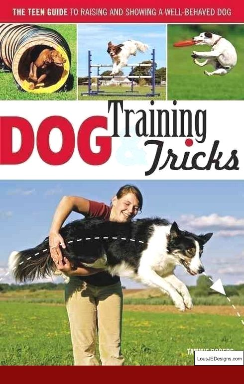 Tips Aggressive Dog Training And Pics Of Train A Dog Not To Bark