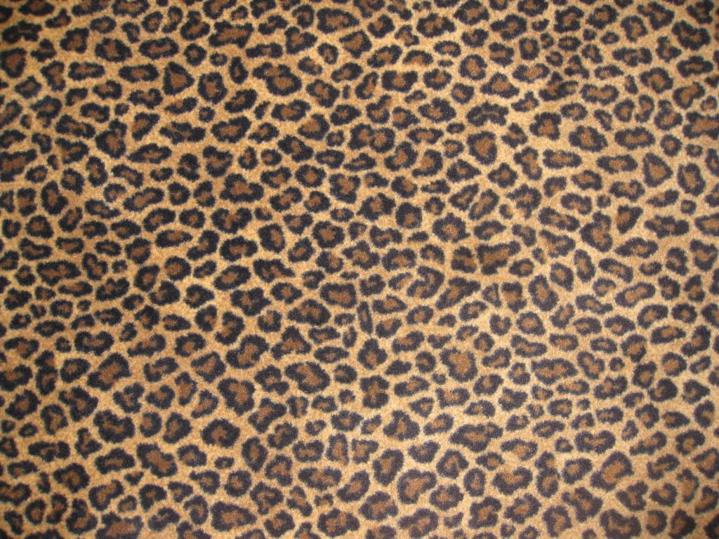 Artwork of Cheetah Print Rugs Bringing an Affectionate and