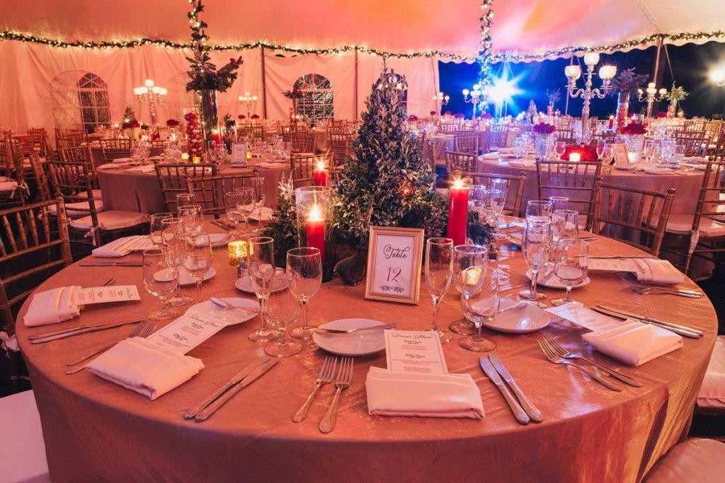 Fairchild Tropical Garden Wedding Tree Wedding Centerpieces