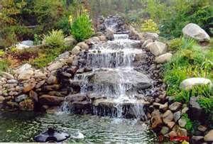 gardening ideas - Bing Images