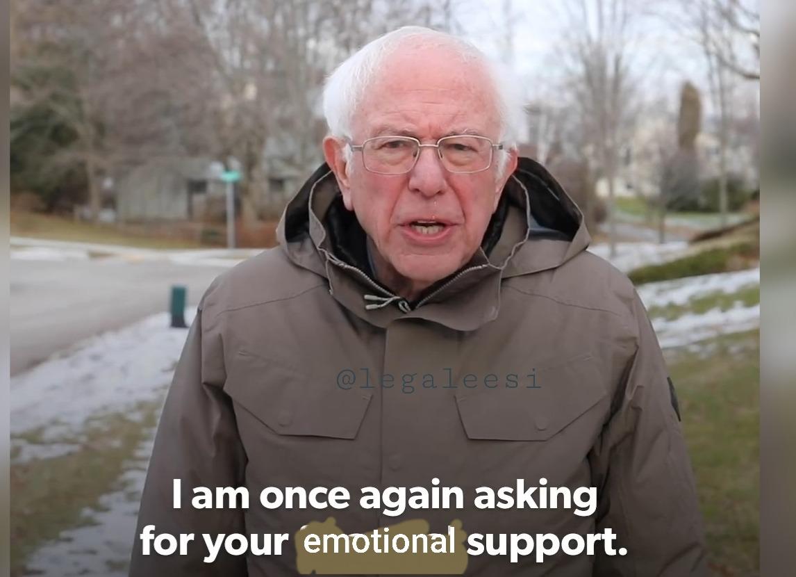 Bernie Wants Emotional Support Reaction Pictures Reactions Meme Atla Memes