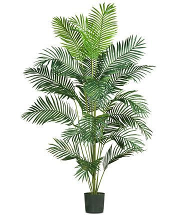 Photo of Hanging Plants Indoor Discover Nearly Natural 7 Paradise Palm Nearly Natural 7 P…