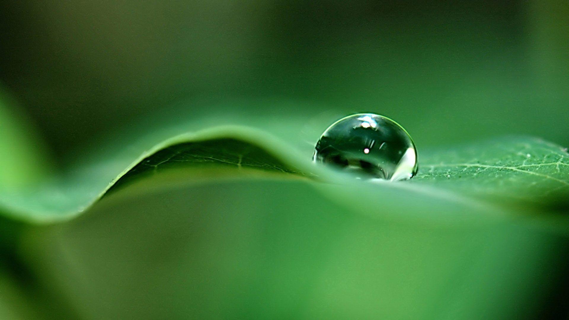 Raindrops On Glass Hd Desktop Wallpaper High Definition Dew Drop Photography Dew Drops Water Drop On Leaf