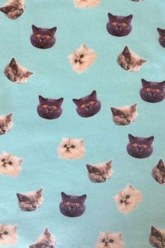 free indie cat backgrounds - Google Search