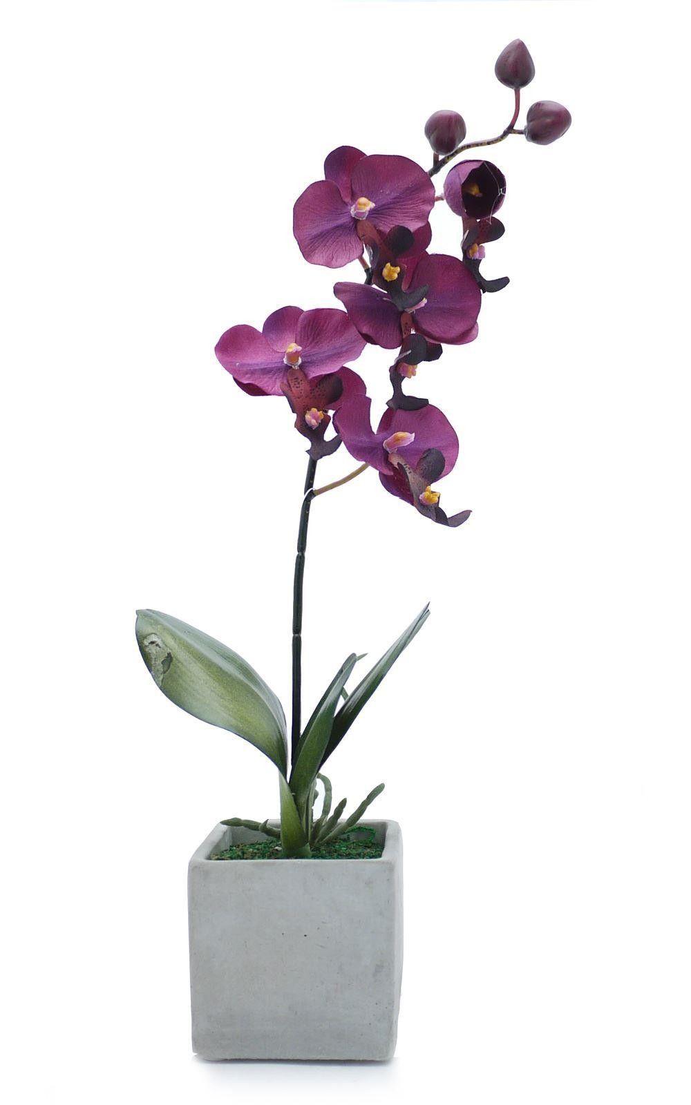 Artificial Orchid in Stone Pot - Purple