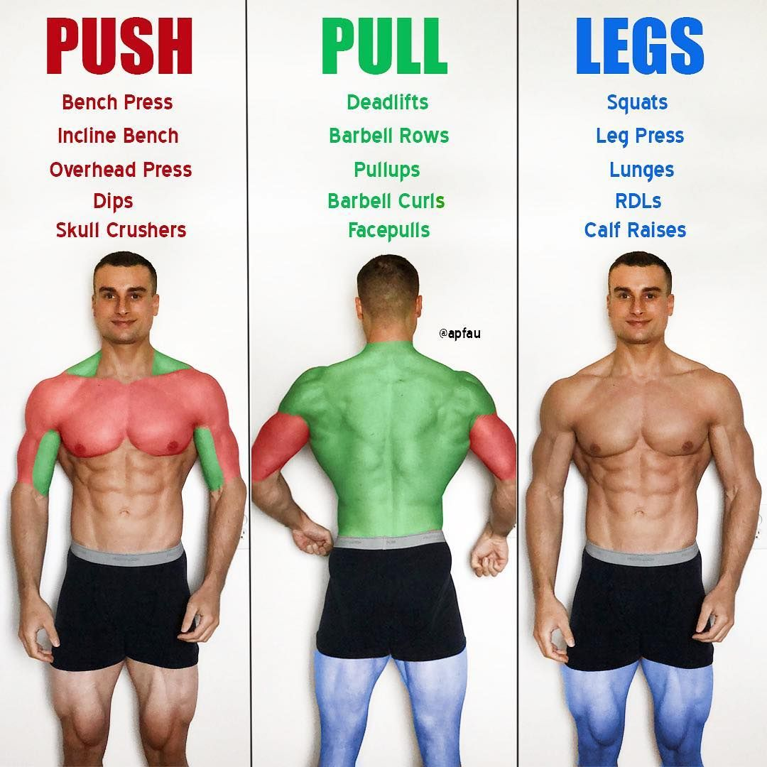 Push Pull Legs Weight Training Workout Schedule For 7 Days