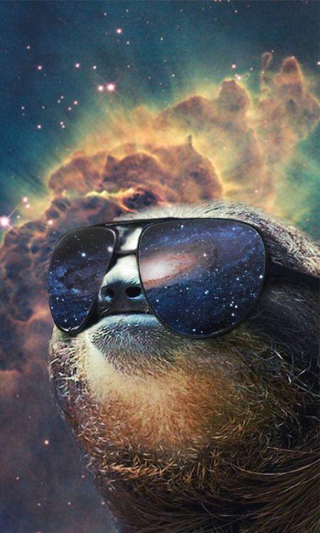 space sloth sunglasses szukaj w google 3 pinterest sloth