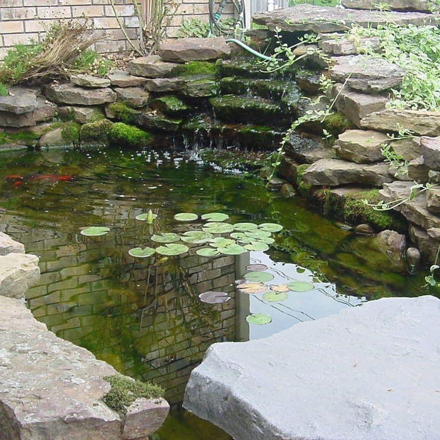 how to build a koi pond on a budget