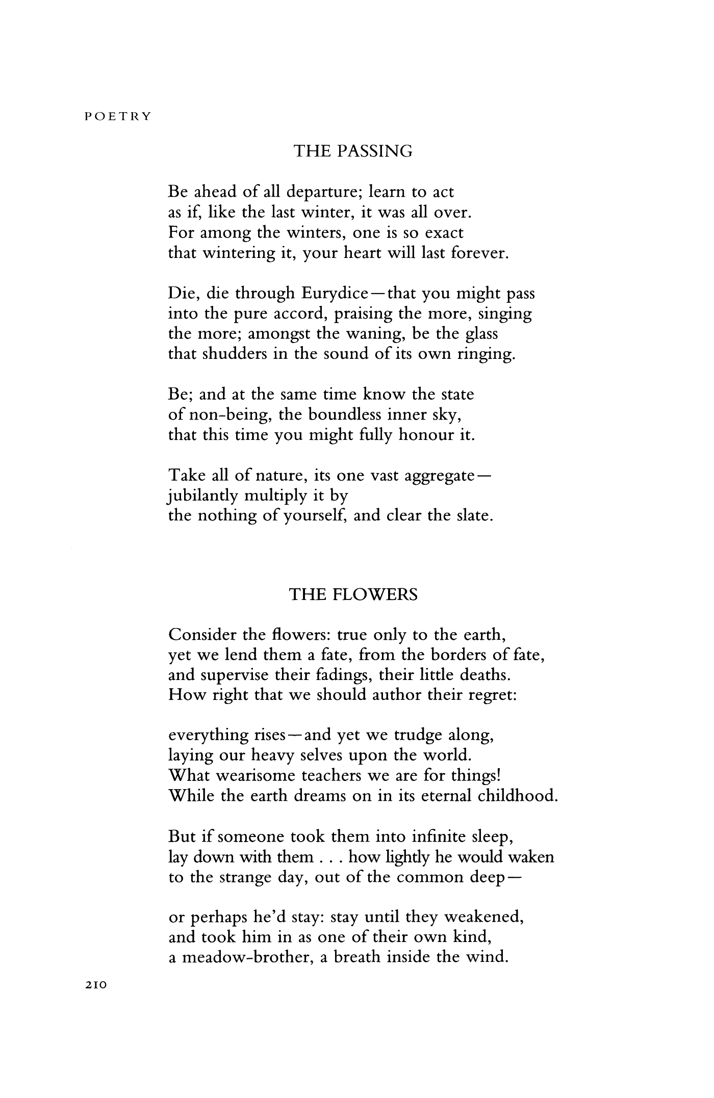 The Passing By Don Paterson Flower Poetry Magazine Quote Inspirational Sun Rising Analysi John Donne