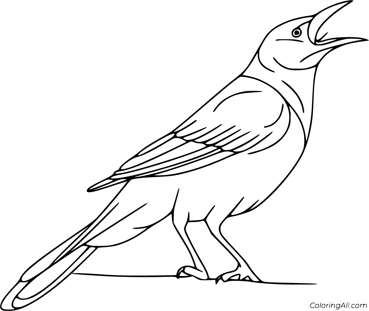 10 Free Printable Crow Coloring Pages In Vector Format Easy To Print From Any Device And Automatically Fit Any Paper S Bird Coloring Pages Coloring Pages Crow