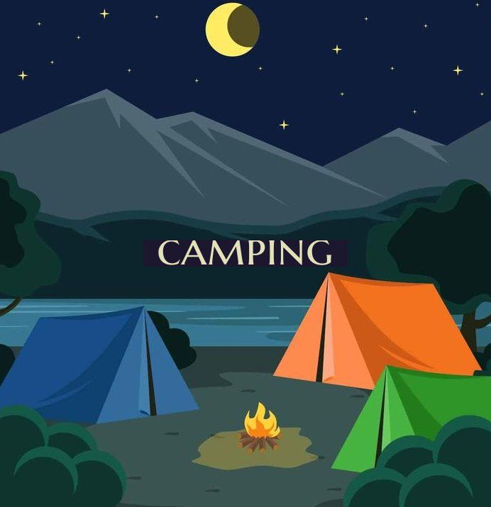Night Camping Illustration Vector - #camping ...