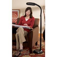 Craft Floor Standing Lamp - Black Natural Daylight. Also Comes in ...