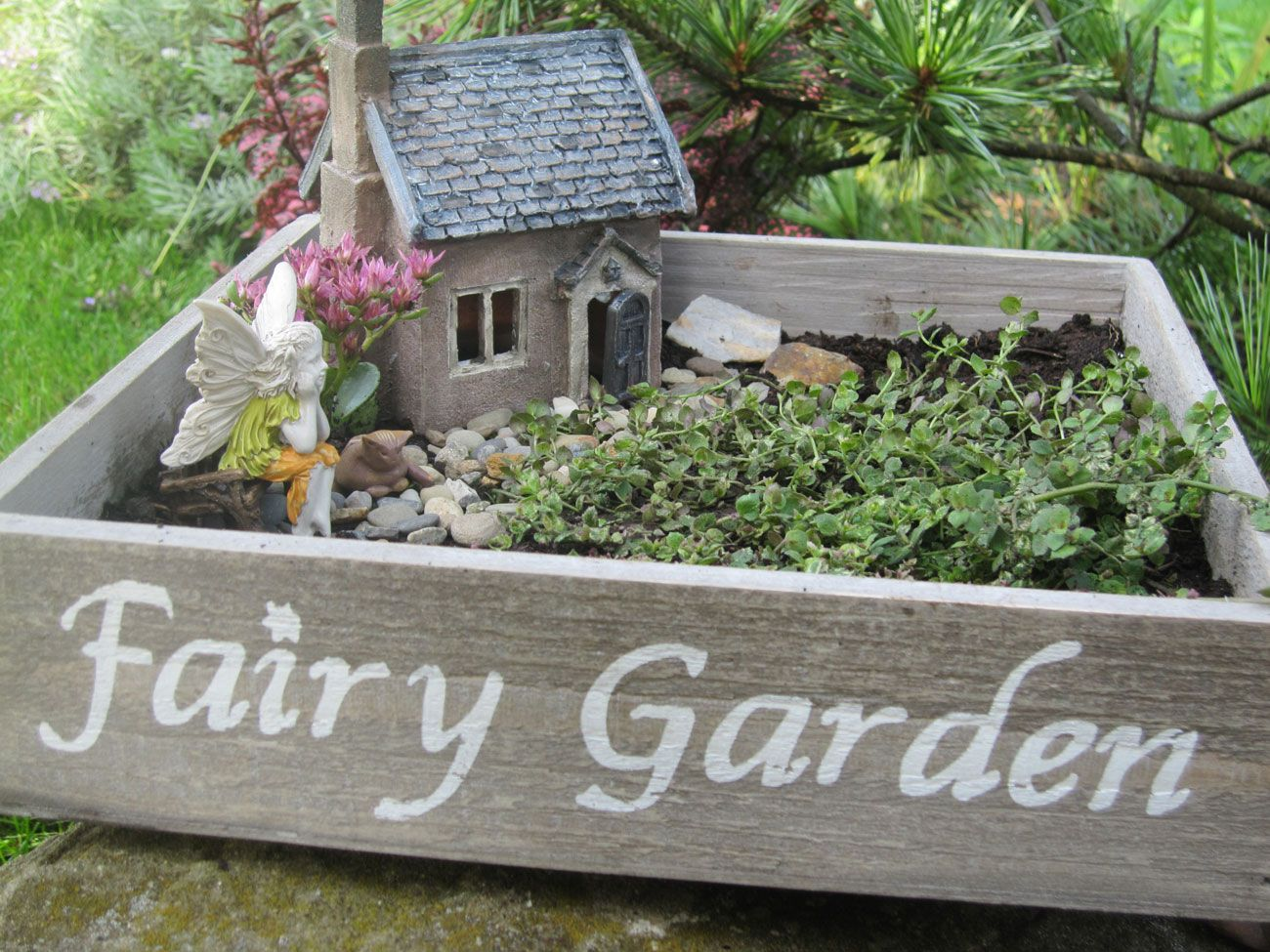 17 Best 1000 images about Mini and Fairy Gardening on Pinterest Fairy