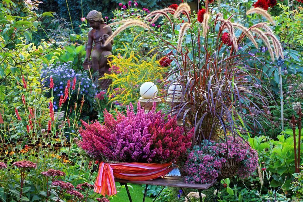 Herbst Pflanzen Und Deko Fur Balkon Und Terrasse Pflanzen Gartenprodukte Garten