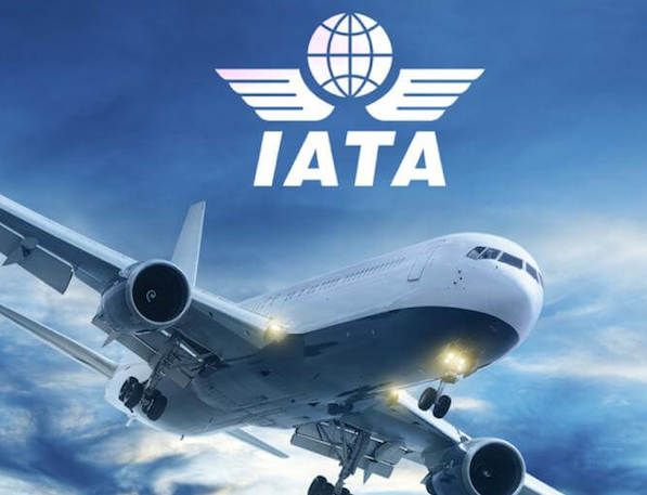 Global airlines records stable profit level in Q4-IATA: The