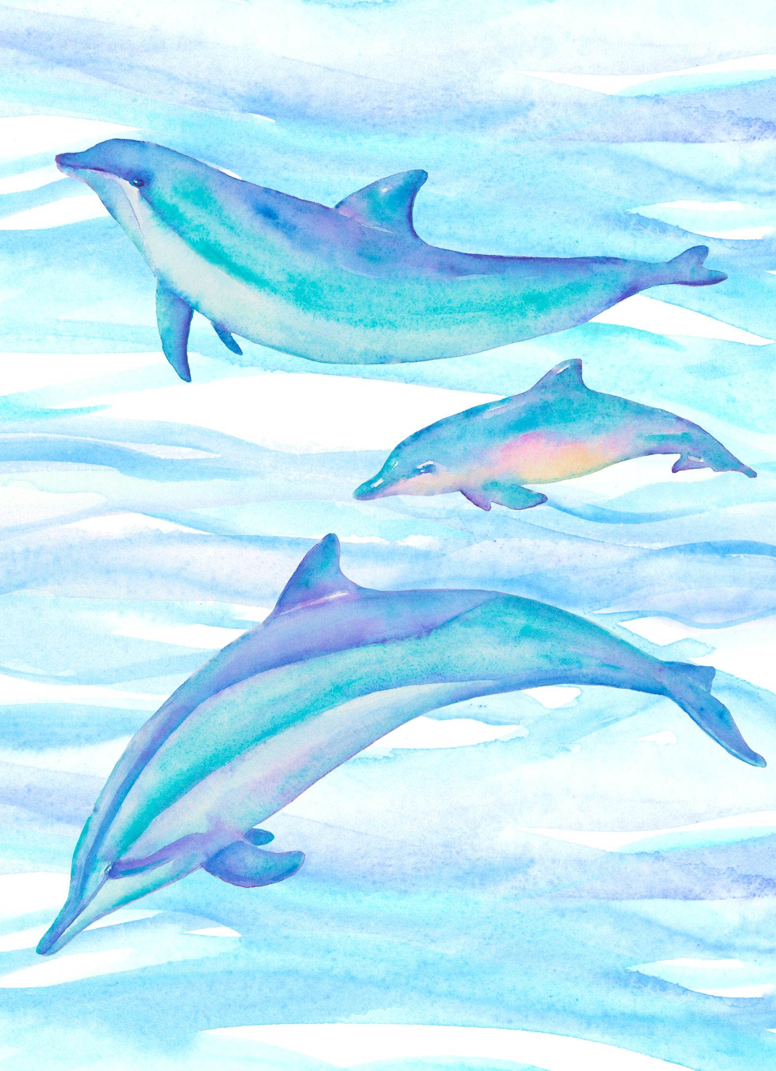 Tina Cash Walsh Dolphin Watercolor Dolphin Art Dolphin Painting Dolphin Drawing