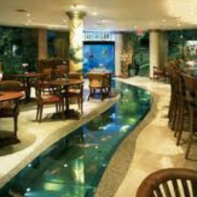 Aquarium floor for the home pinterest aquariums for Floor fish tank
