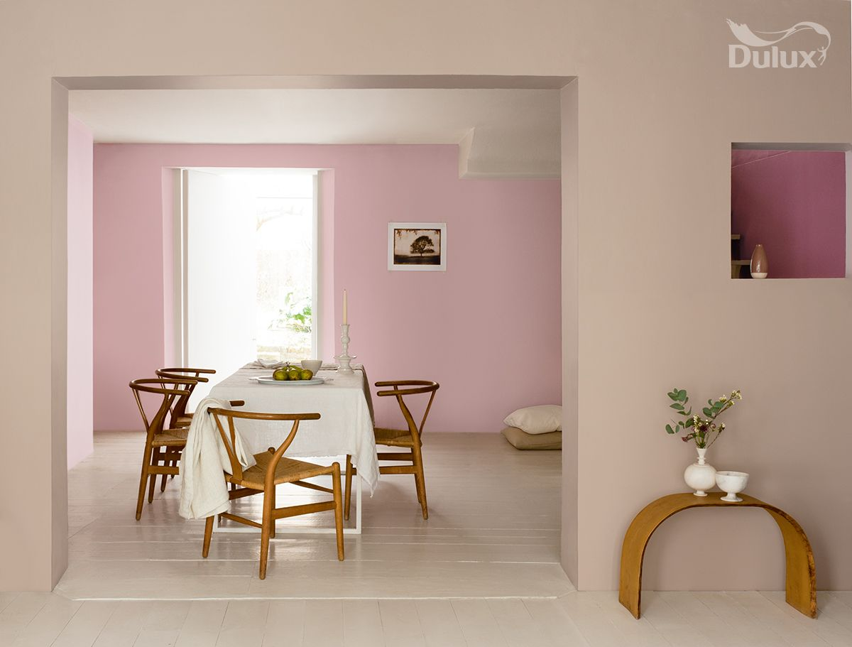 Offset Pink Shades With Modern Stripped Back Furniture