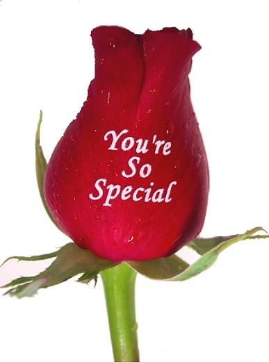 Youre So Special