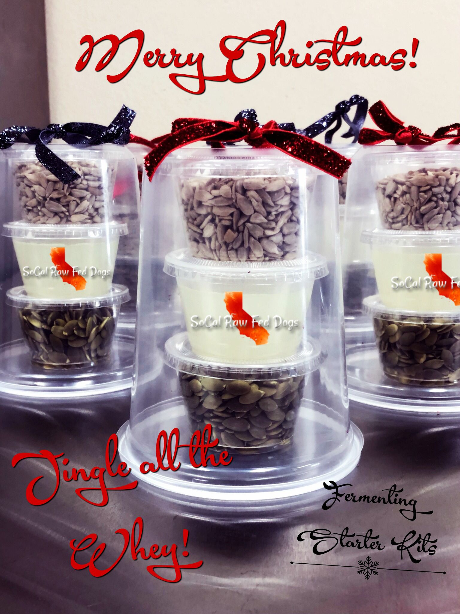 Jingle All The Whey How To Ferment Raw Seeds For Dogs Raw Feeding For Dogs Fermentation Organic Kefir