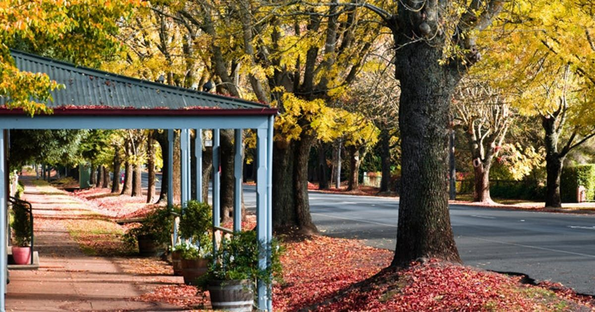 Your goto guide for the perfect Daylesford experience