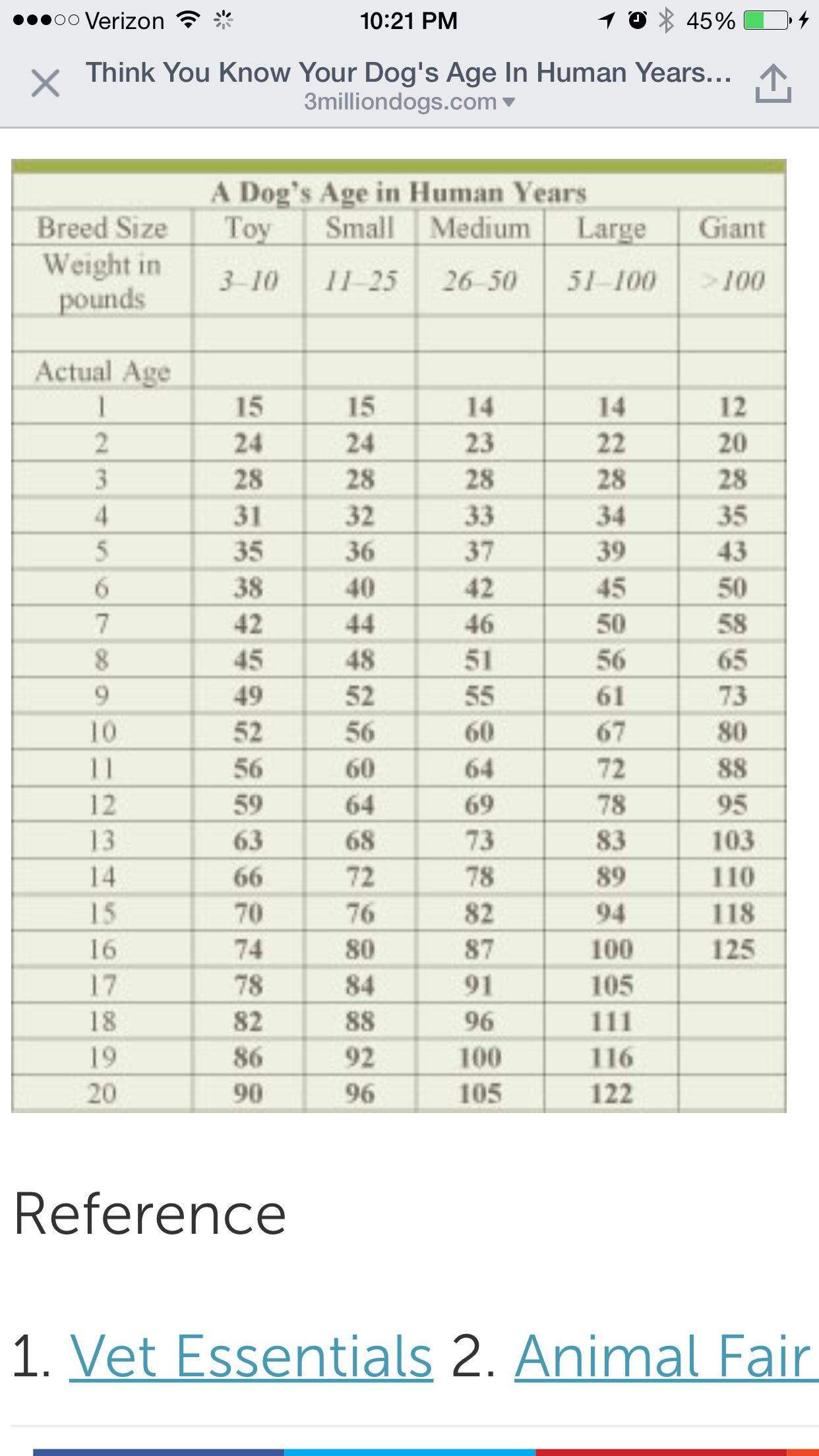 Dig Years Dog Ages Dog Age Chart Dogs
