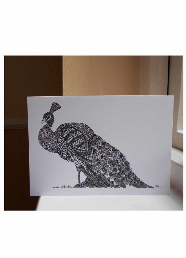 Peacock blank greeting card and pack of 4 cards 280 delightful peacock blank greeting card and pack of 4 cards 280 cellophane wrapwhite m4hsunfo