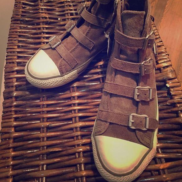 Ash suede never worn!!! Ash Shoes