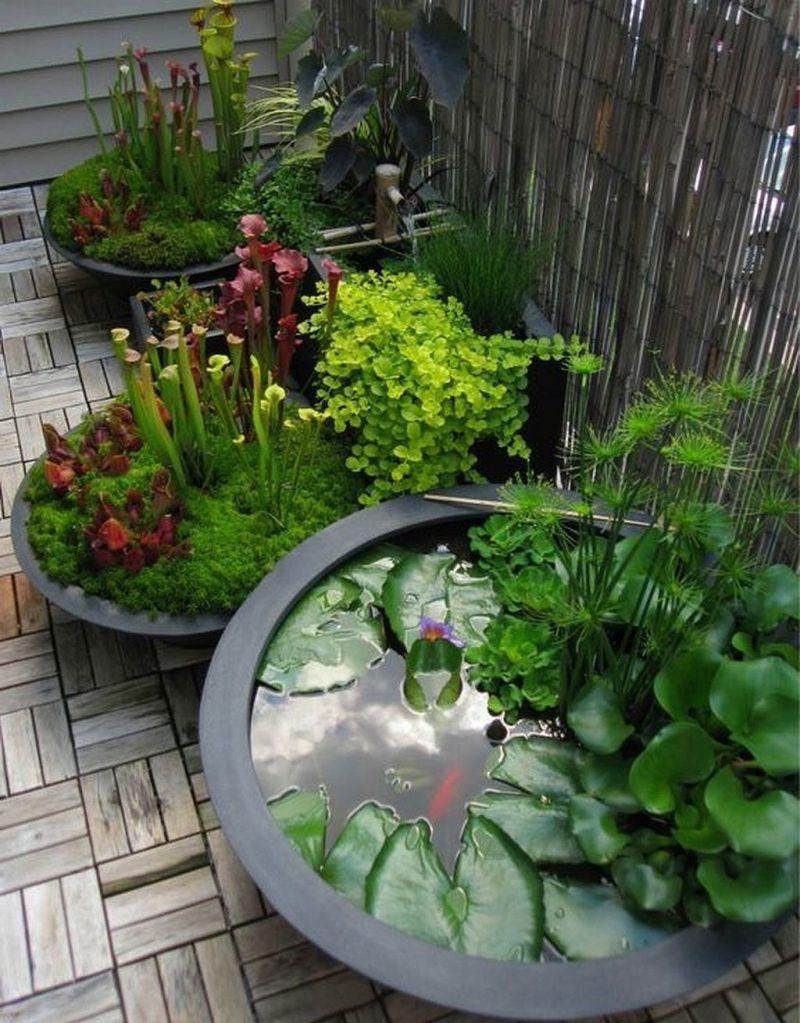 Balkon Ideen selber Machen: Ein Mini-Teich im Topf – Balkon, DIY – ZENIDEEN