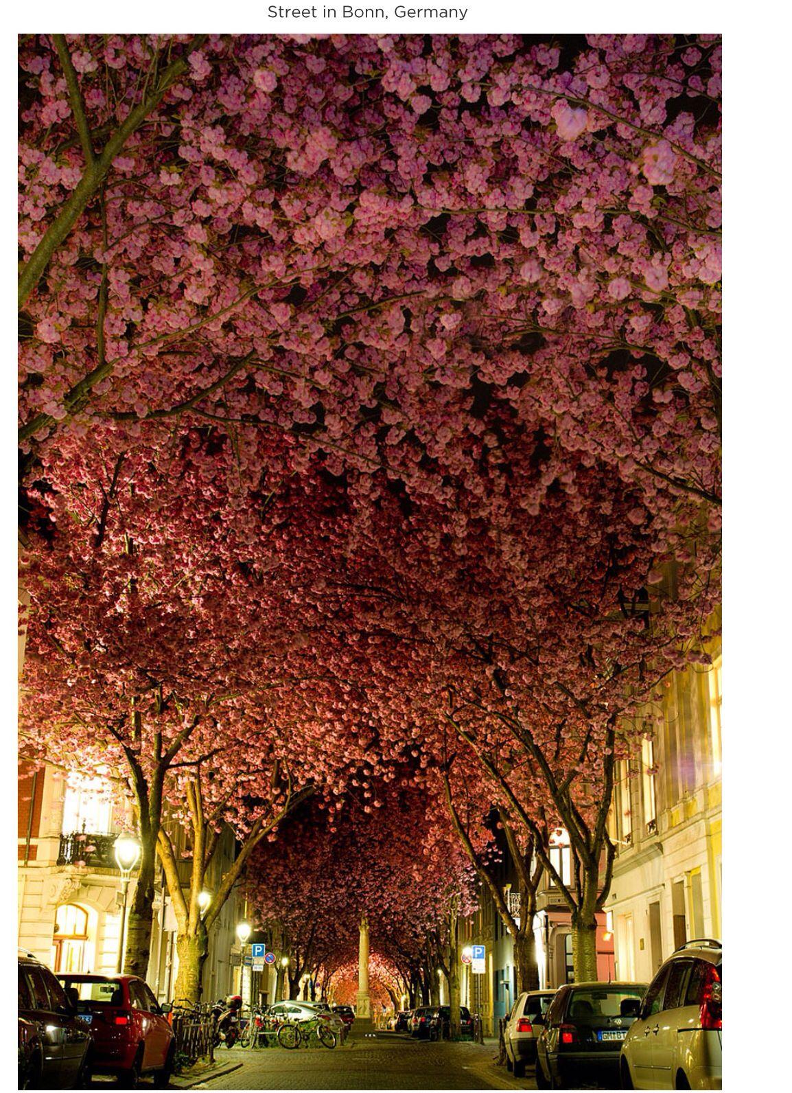 Street in Germany.