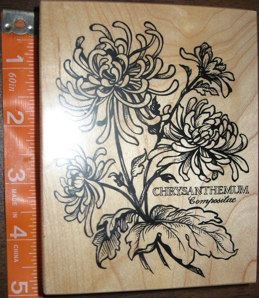 Psx chrysantehmum floral botanical k rubber stamp flower garden